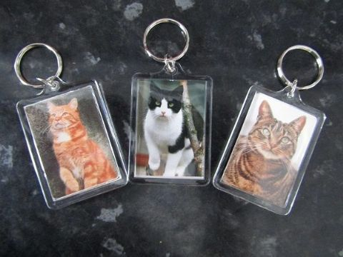 CAT KEY RINGS QUALITY ACRYLIC DOUBLE SIDED PHOTO KEY RINGS 3 BREEDS TO COLLECT
